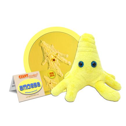 Amoeba-Yellow