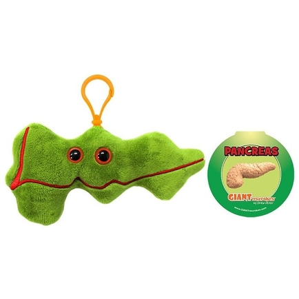 Pancreas key chain