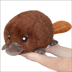 Mini Squishable Baby Platypus