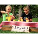The Lemonade Set - Made in USA