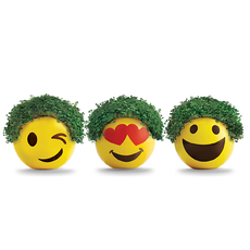 Chia Emoji 16 ct. Floor Display