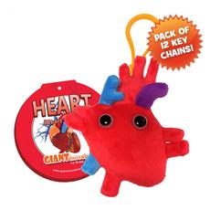 Heart (Heart Organ) Keychain