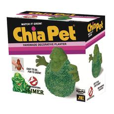 Chia Slimer