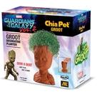 Chia Groot, Guardian of the Galaxy