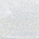 Snow Angel Holographic Glitter 2