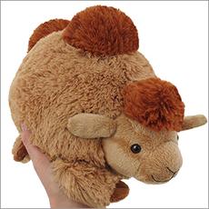 Mini Camel