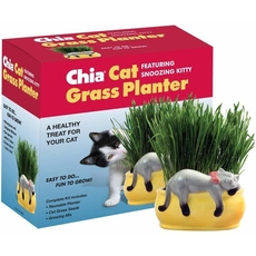 Chia Snoozing Kitten Planter
