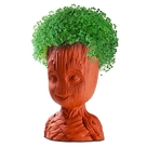 Chia Groot, Guardian of the Galaxy