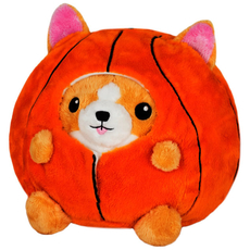 Undercover Corgi in Basketball