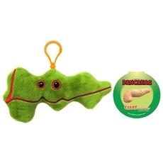Pancreas key chain