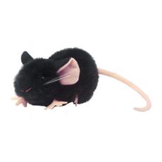 Black Lab Mouse