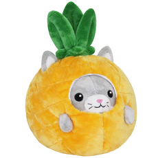 Undercover! Kitty in Pineapple